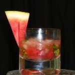 skinny watermelon salsa cocktail feature