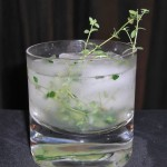 cucumber thyme gin and tonic cocktail